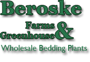 Beroskes Farms and Greenhouse